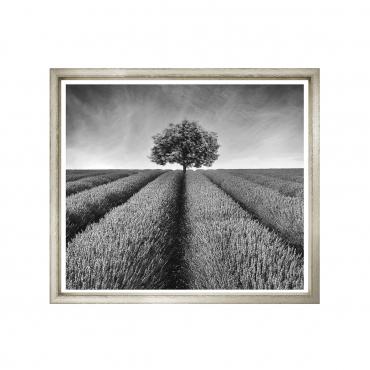 "Фотопринт в раме ""Landscape Ii"", 61x51 см"